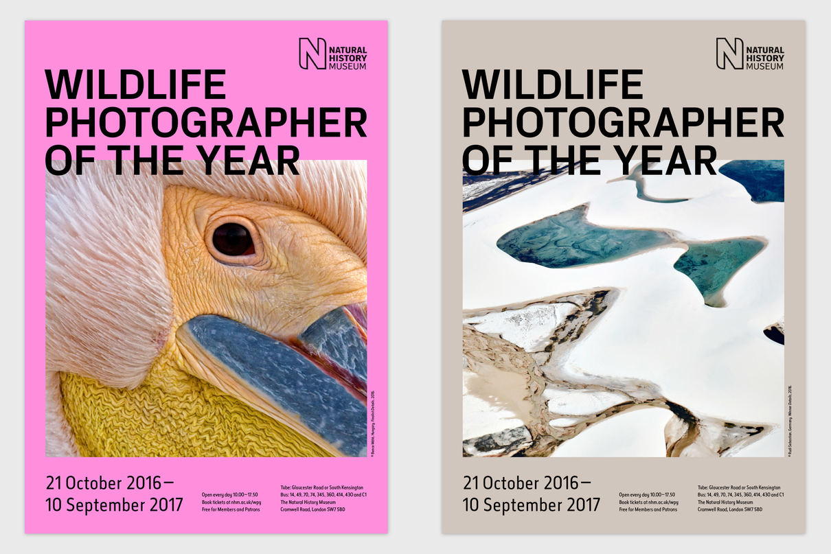 Wildlife Photographer of the Year proposal posters, design by Praline